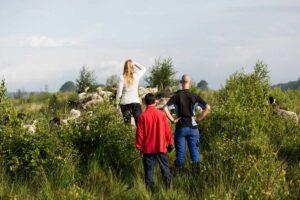 Zorgherders en-bewoners-van-Phusis-gaan-voortaan-samen-het-veld-in-om-de-dieren-te-verzorgen-en-de-terreinen-te-onderhouden
