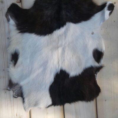 75x55 cm, geitenvel van heidegeit uit norg