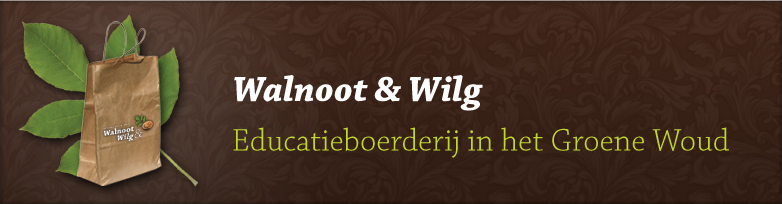 Walnoot & Wilg logo